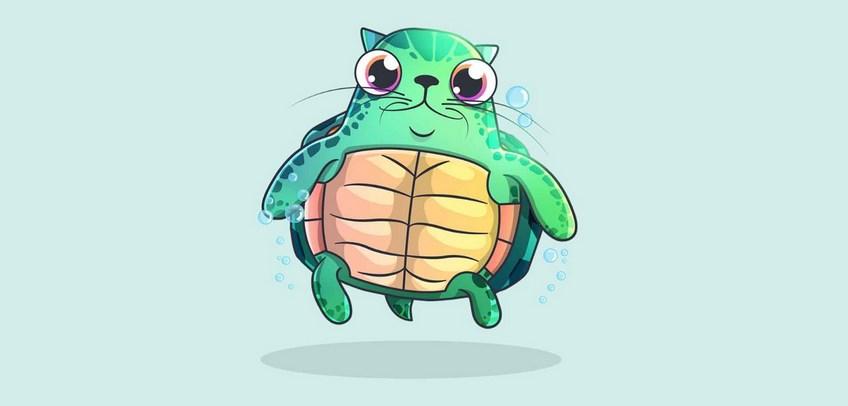 CryptoKitties : Un chat virtuel vendu pour aider à la protection des tortues marines