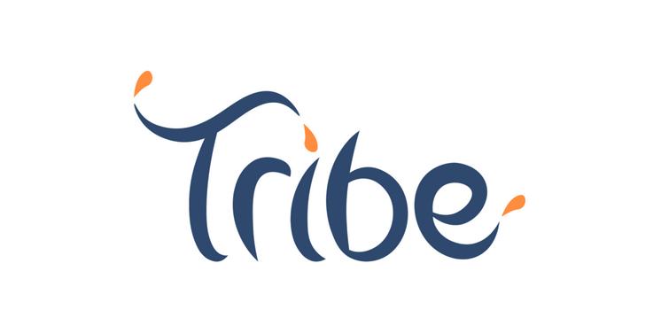IBM, Ubisoft et Citi soutiennent l'incubateur blockchain TRIBE Accelerator