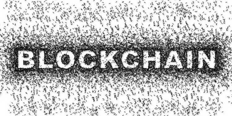 VP Oracle blockchain : La technologie sera adoptée par 50% des entreprises d'ici 3 ans