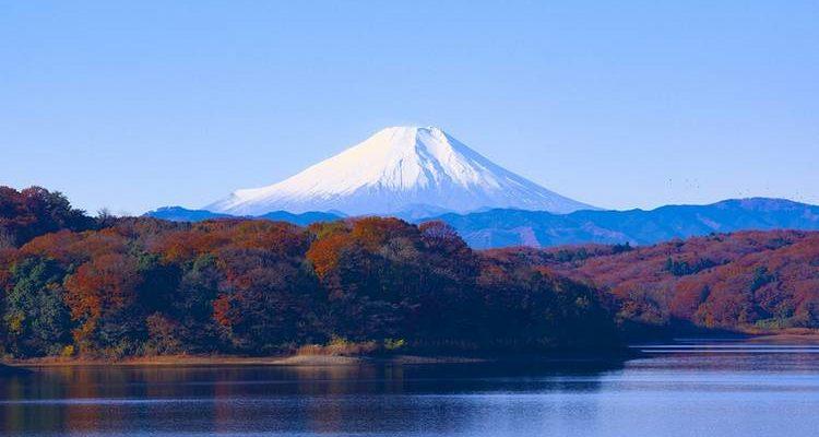 JP Morgan va déployer son réseau blockchain INN au Japon