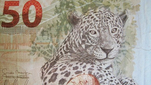 Billet de banque brésilien
