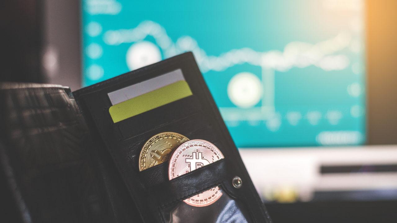 Comment se protéger des fluctuations ? Grâce à 1% de Bitcoin - Cryptonaute
