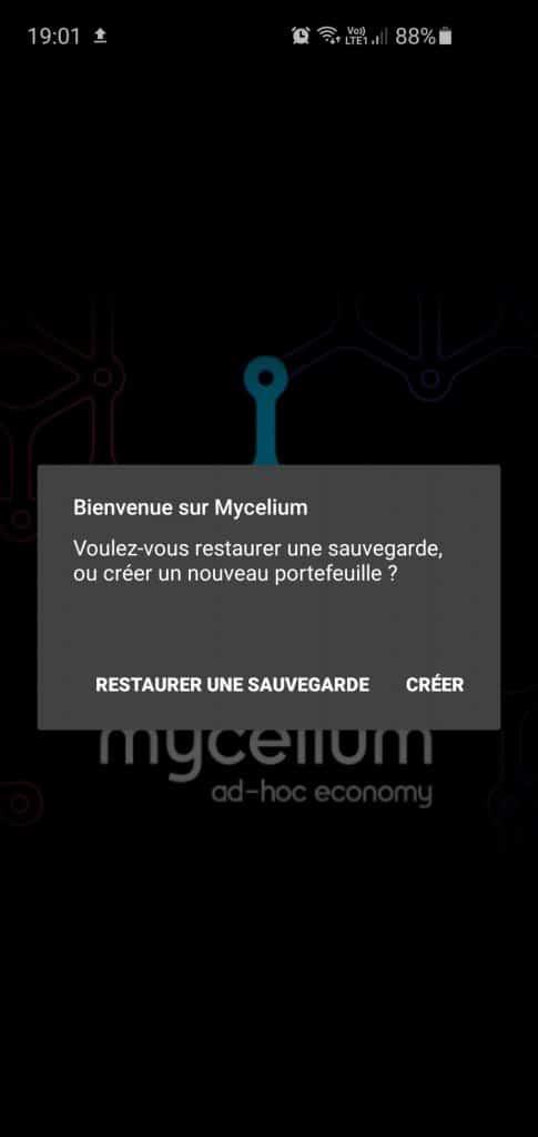 Mycelium étape 2