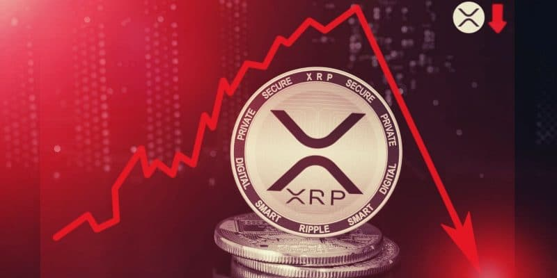 Bannir Bitcoin ? Pas du tout, exclut le co-créateur du XRP