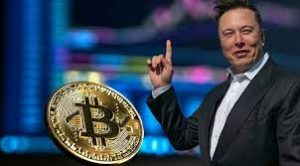 When Elon Musk tweets and Bitcoin moves