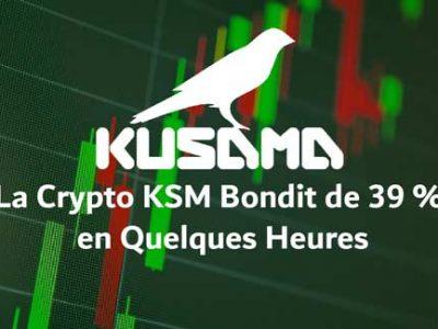 KUSAMA KSM gagne 39 % en quelques heures