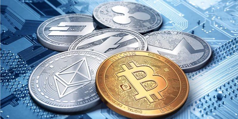 Ethereum et Solana captent les institutionnels malgré la chute crypto
