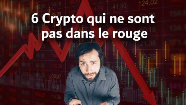 6 crypto qui ne sont pas dans le rouge